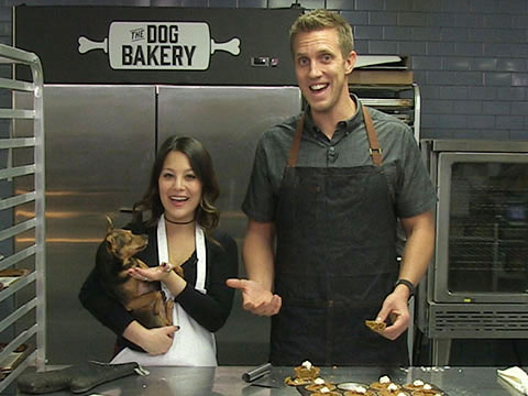 How to Make The Dog Bakery's Barkgiving Pie